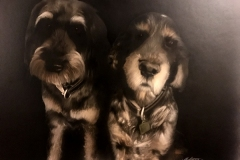 Dogs Portrait