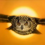 Eagle Owl by artist, illustrator and graphic designer Greg Whiteman